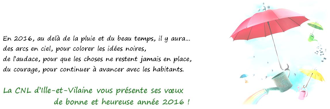 Voeux_2016-3